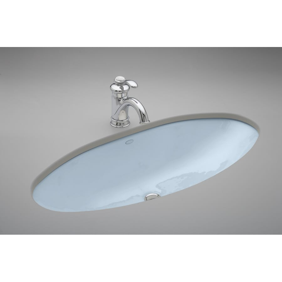 Shop KOHLER Ellipse Skylight Undermount Bath Sink at Lowes.com