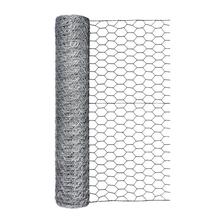 Blue Hawk Rolled Wire Galvanized Steel Poultry Netting (Common: 50-ft x 2-ft; Actual: 50-ft x 2-ft)