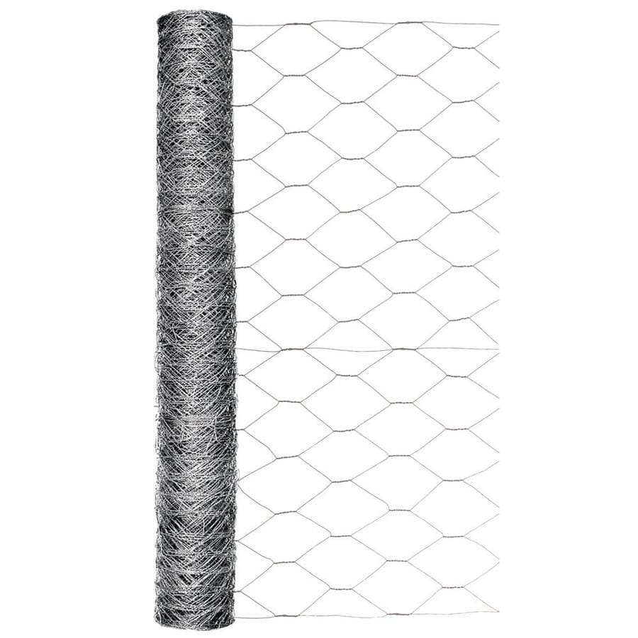 Blue Hawk (Actual: 50-ft x 2-ft) Rolled Wire Galvanized Steel Poultry Netting Rolled Fencing
