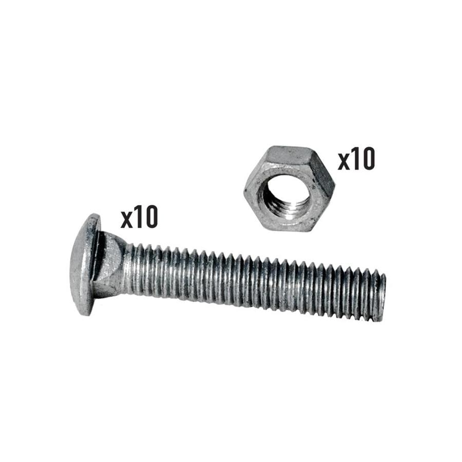 Blue Hawk 10-Count 3/8-in x 2-in Galvanized/Uncoated Carriage Bolt