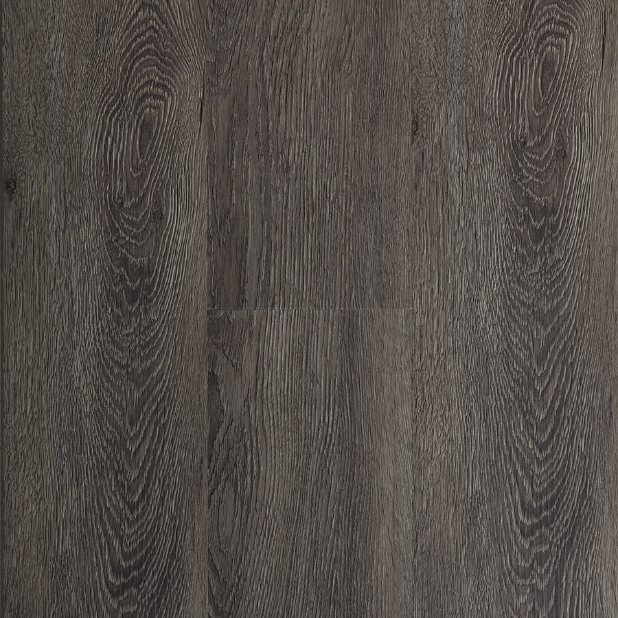 Shop STAINMASTER 10 Piece 574 in X 4774 in Burnished