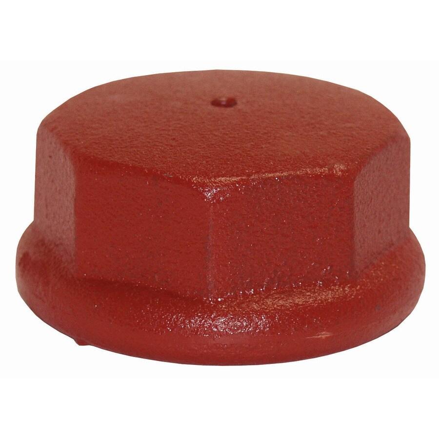 ProPlumber Cast Iron Cap