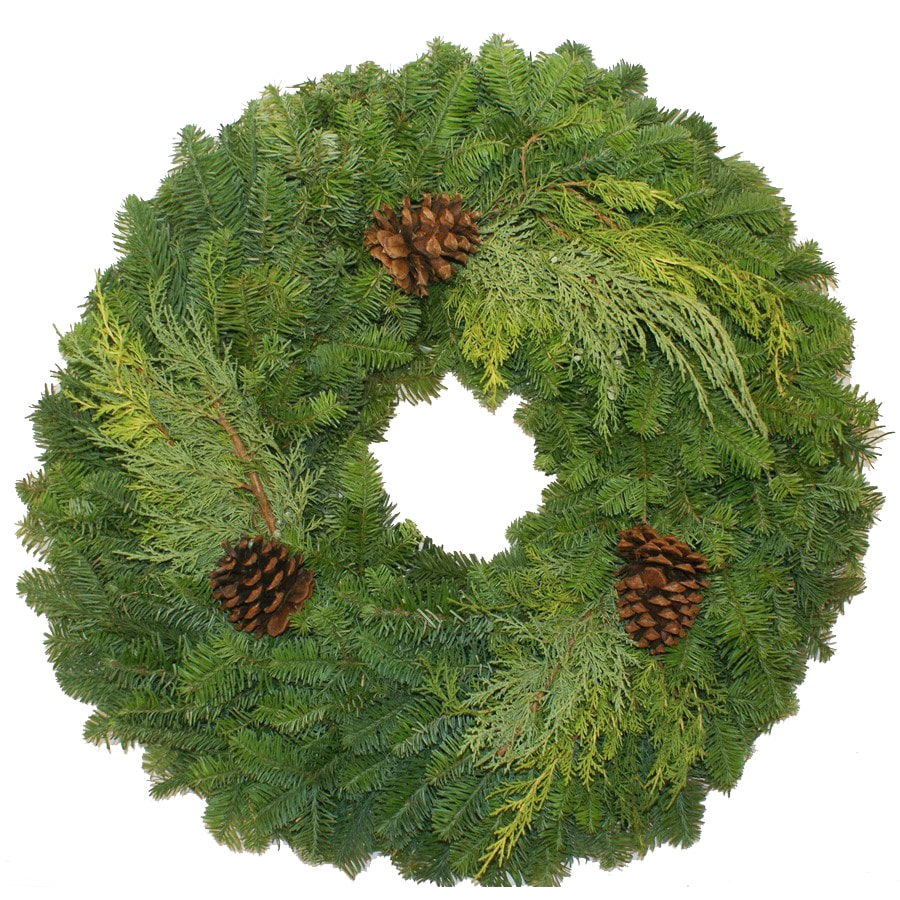 "22"" Fresh-Cut Noble Fir Wreath with Pinecones"