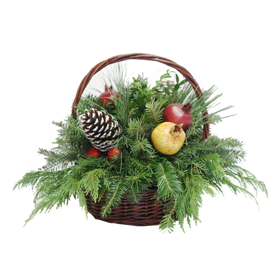 Shop fresh cut christmas decorative fruit and greenery