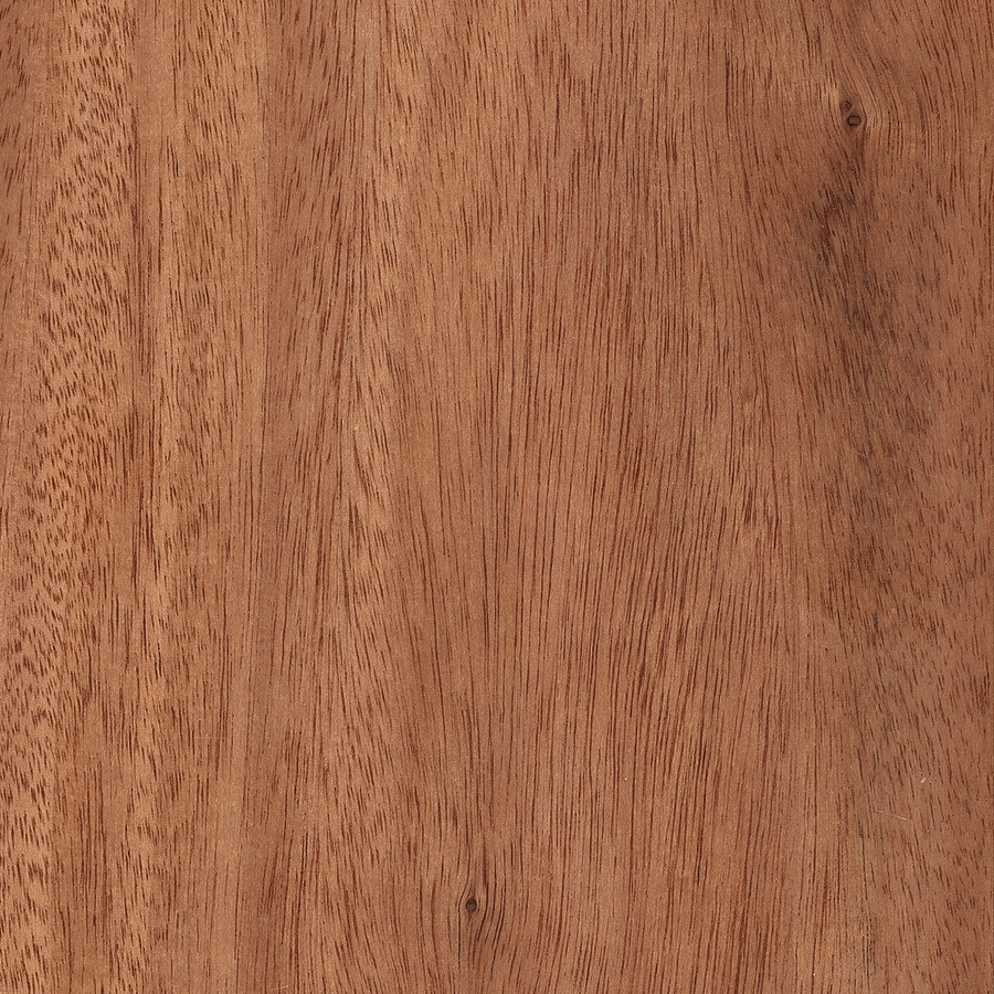 Style Selections Oak Hardwood Flooring Sample (Brown)