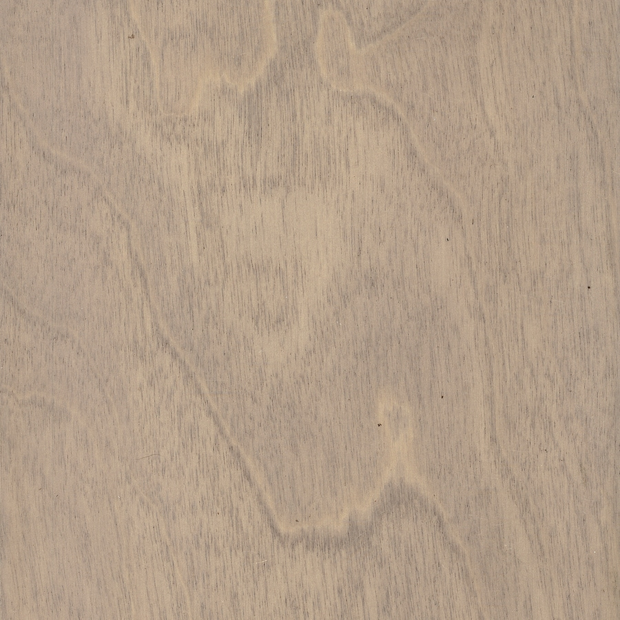 Style Selections Birch Hardwood Flooring Sample (Grey)