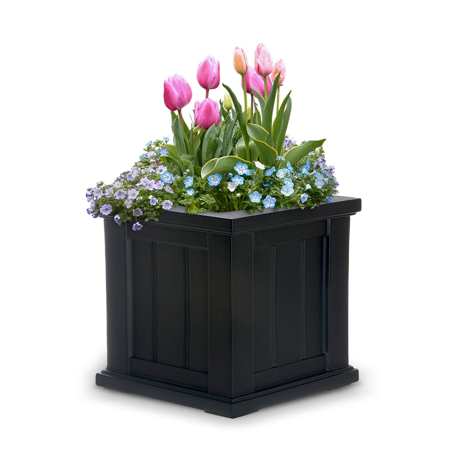 Mayne 14-in x 14-in Black Resin Self Watering Square Planter