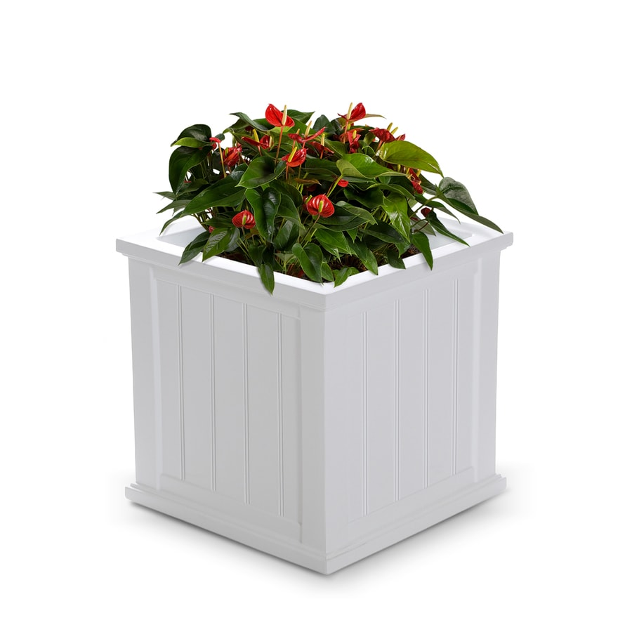 Mayne 20-in x 20-in White Resin Self Watering Square Planter