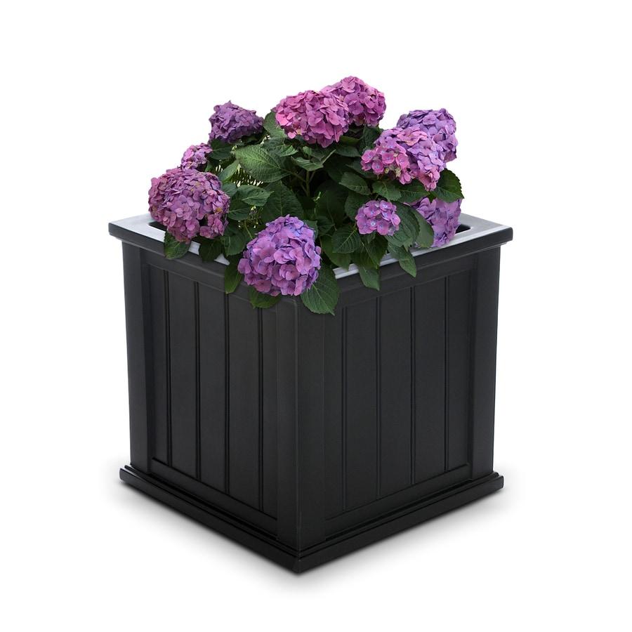 Mayne 20-in x 20-in Black Resin Self Watering Square Planter