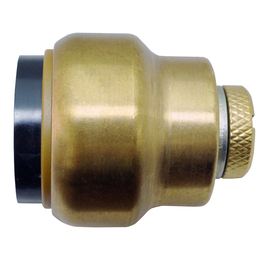 Blue Hawk Compression/Push x Compression/Push Tube Cap Push Fitting