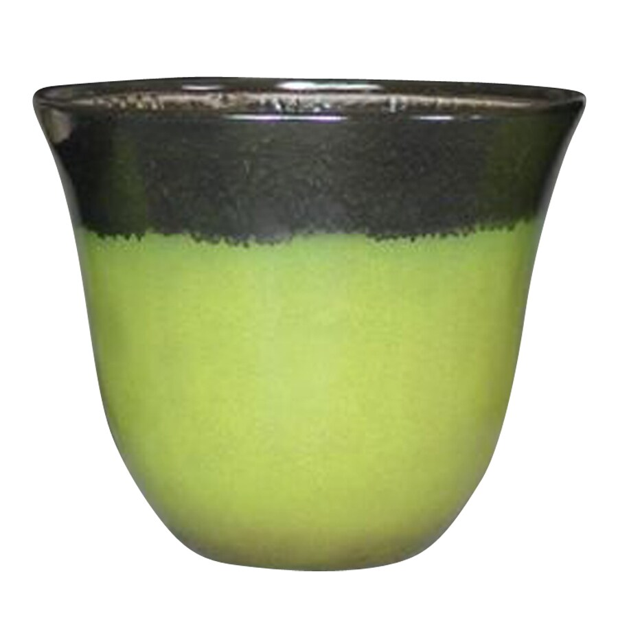 allen + roth 13-in x 10.78-in Green Brown Plastic Planter