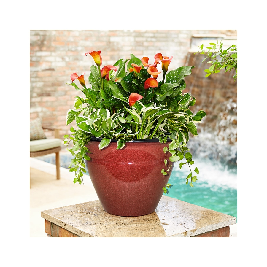 allen + roth 14-in x 9.75-in Red Resin Tapered Planter