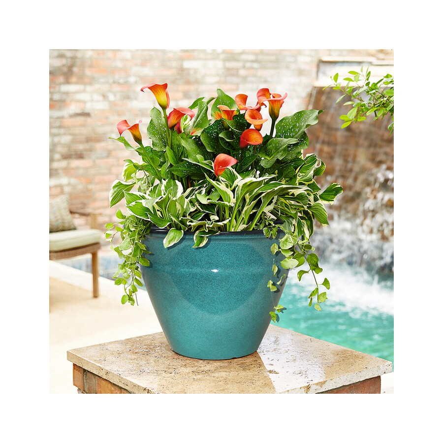allen + roth 14-in x 9.75-in Turquoise Resin Tapered Planter