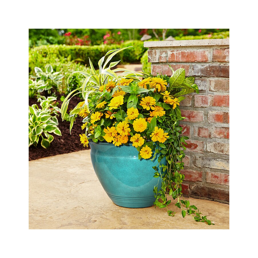allen + roth 20-in x 13.75-in Turquoise Resin Tapered Planter