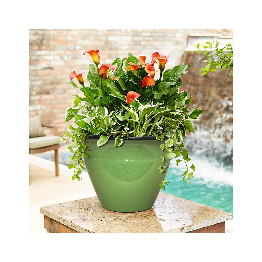 allen + roth 14-in x 9.75-in Green Resin Tapered Planter