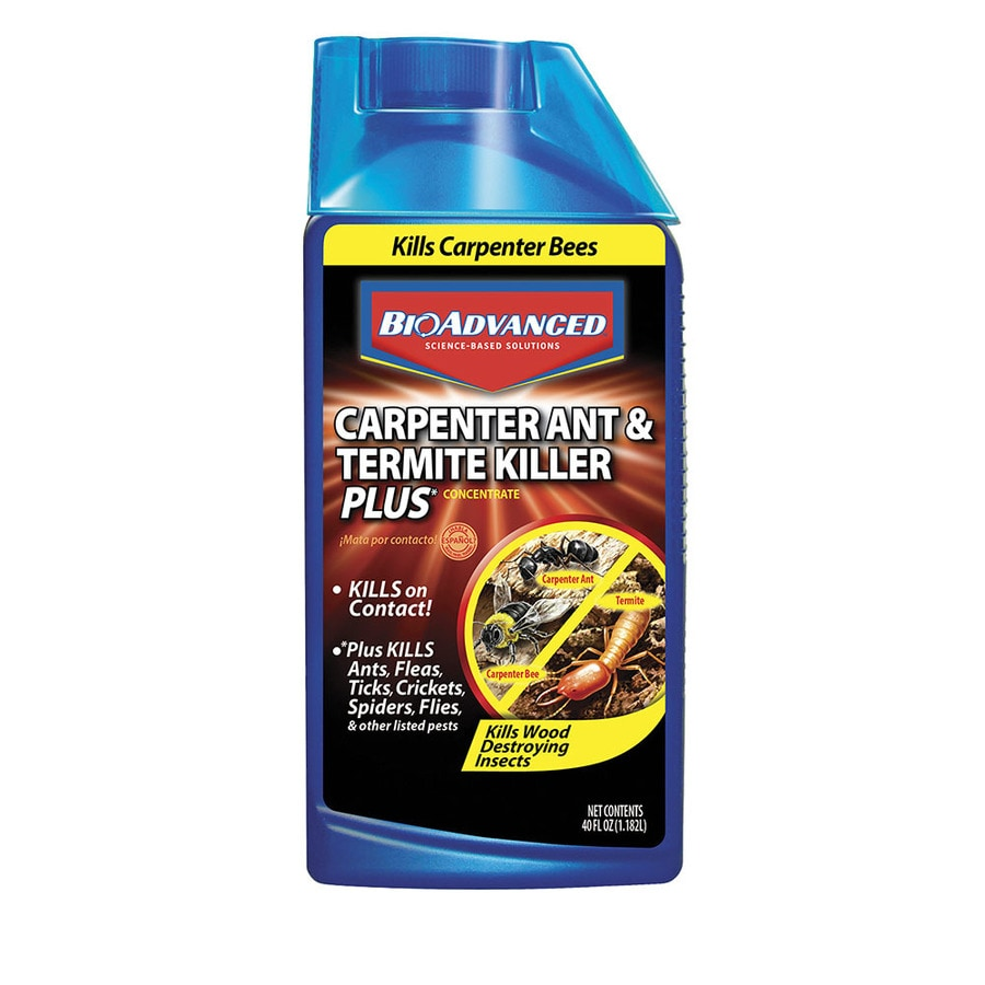 BAYER ADVANCED Carpenter Ant and Termite Killer Plus 32-fl oz Insect Killer