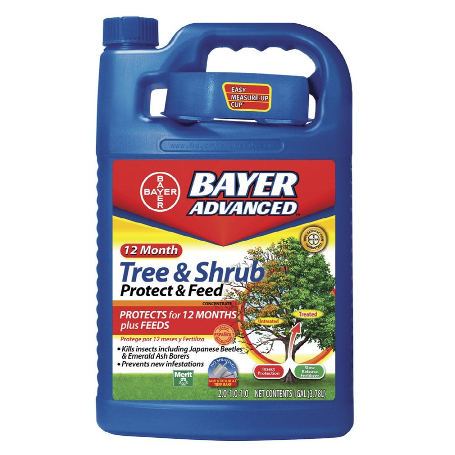 BAYER ADVANCED 1-Gallon Tree and Shrub Food (2-1-1)