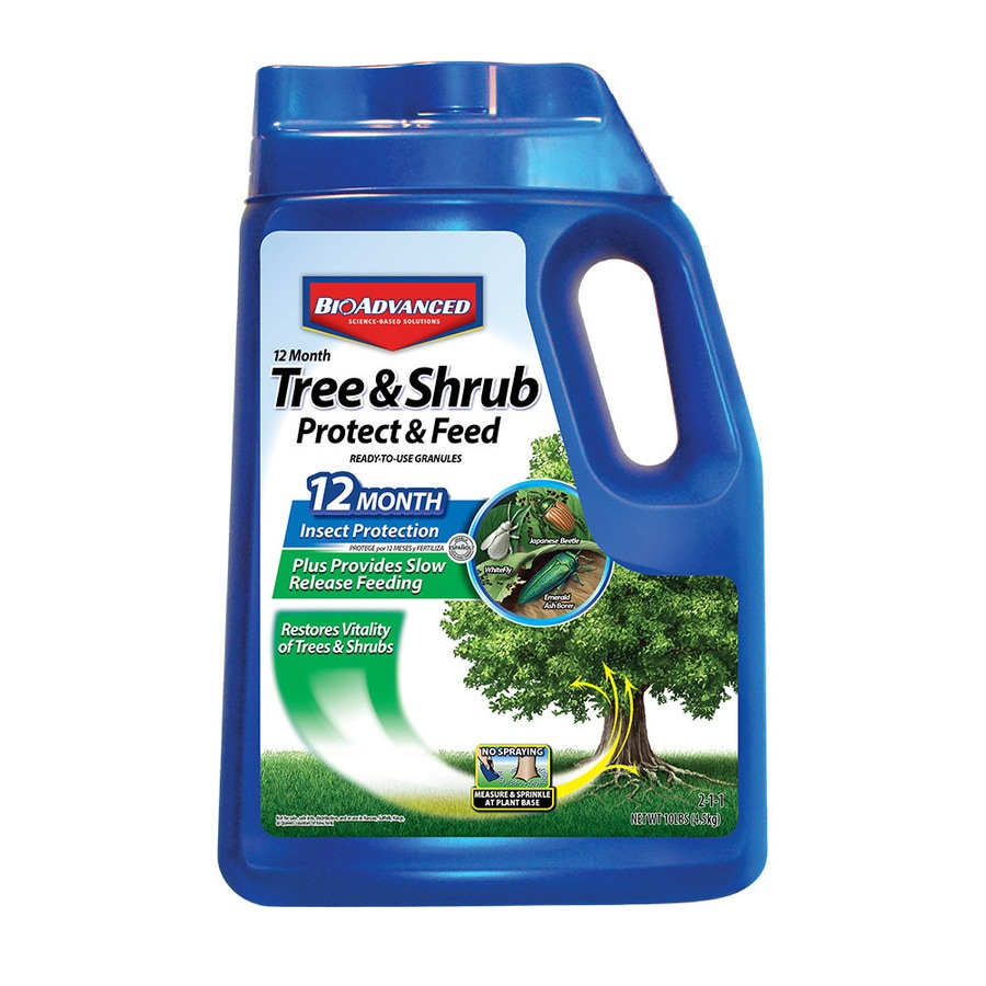 BAYER ADVANCED 10-lb Tree and Shrub Food (2-1-1)