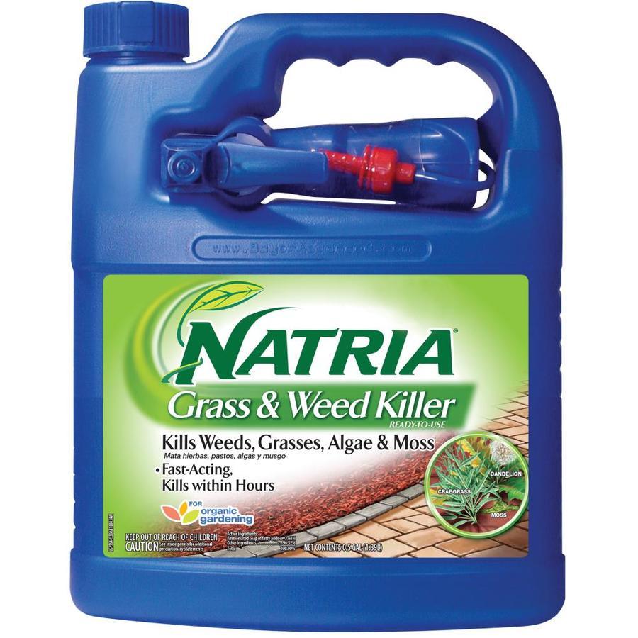 BAYER ADVANCED Natria 64-fl oz Weed and Grass Killer