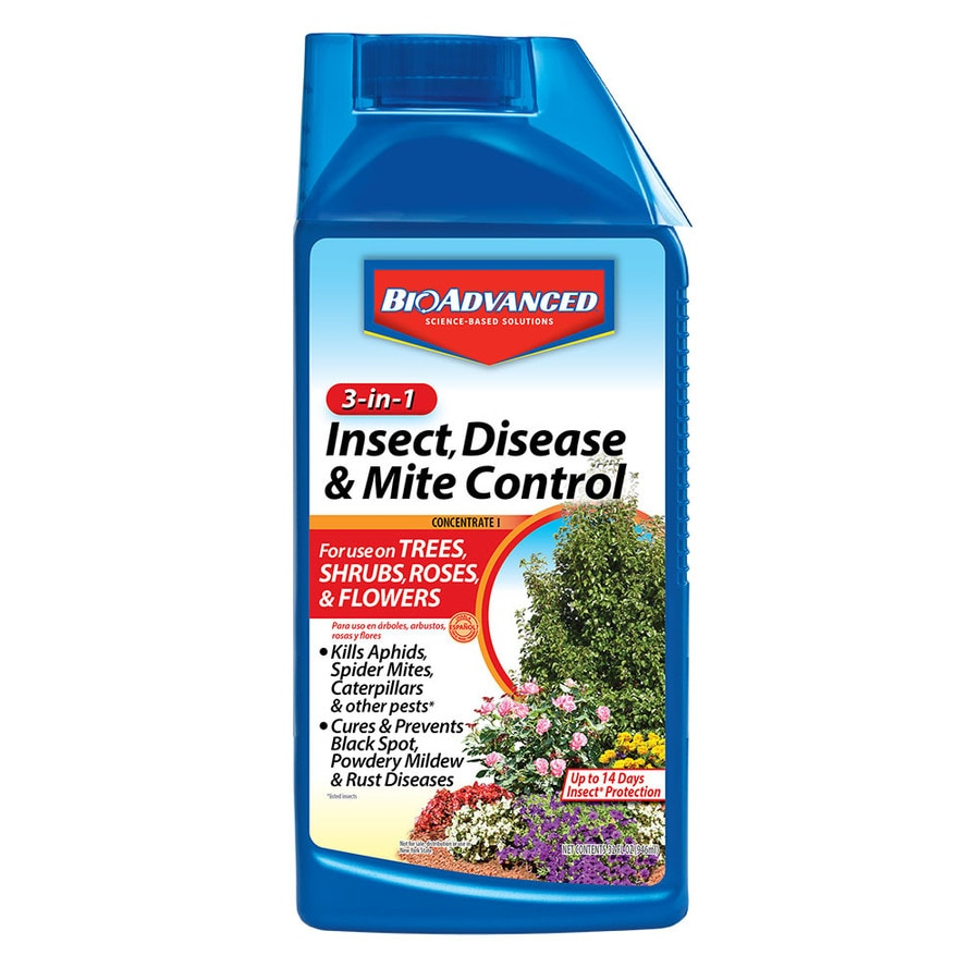 BAYER ADVANCED 3 in 1 Insect, Disease and Mite Control 32-fl oz Garden Insect Killer
