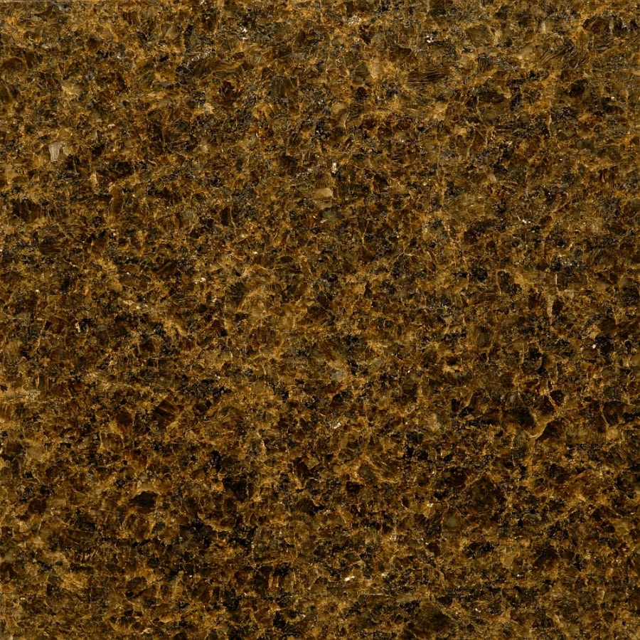 Bedrosians 12-in x 12-in Green Granite Floor Tile
