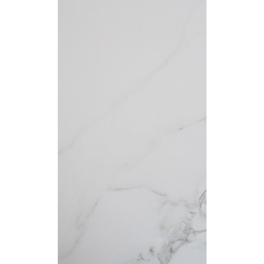 Floors 2000 Calacatta 8 Pack White Porcelain Floor And Wall Tile Common 12