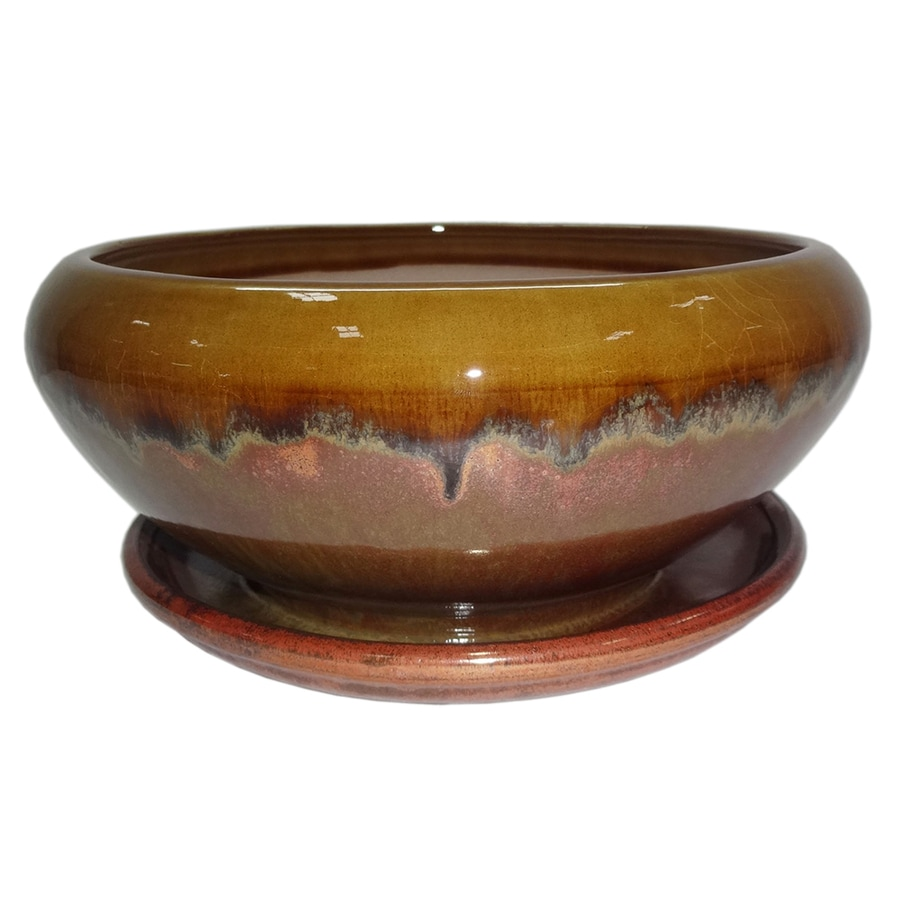 Garden Treasures 8.07 In X 4.49 In Copper Honey Ceramic Low Bowl Planter