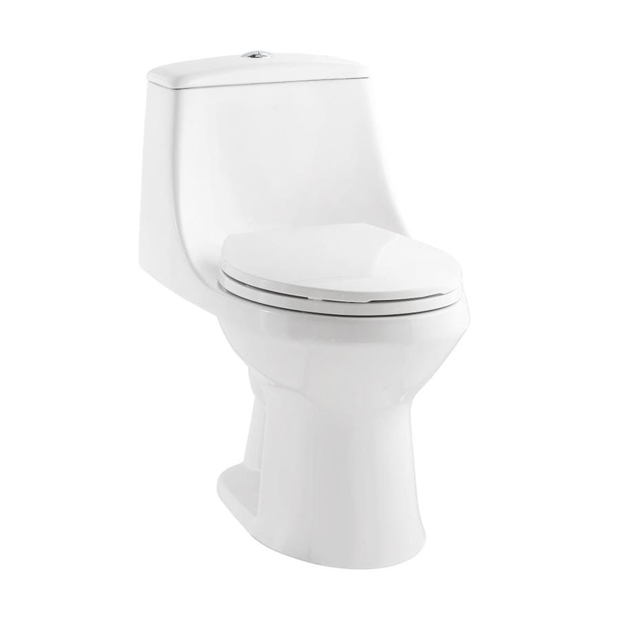 Aquasource Rian White Watersense Dual Flush Elongated Chair Height Toilet 12 In Rough In Size In The Toilets Department At Lowes Com