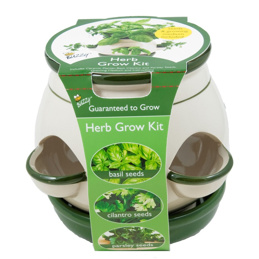 Kitchen Garden Kit: Shop Buzzy Herb Gardening Kit At Lowes.com