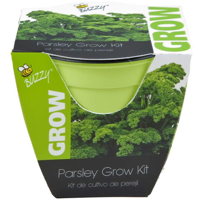 Buzzy Herb Gardening Kit In The Gardening Kits Department At Lowes Com