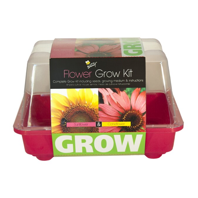Buzzy Flower Gardening Kit At Lowes Com