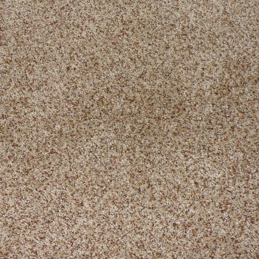 STAINMASTER Active Family Maple Springs Sable Interior Carpet