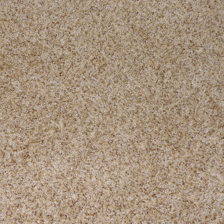 STAINMASTER Active Family Stanfield Champagne Interior Carpet