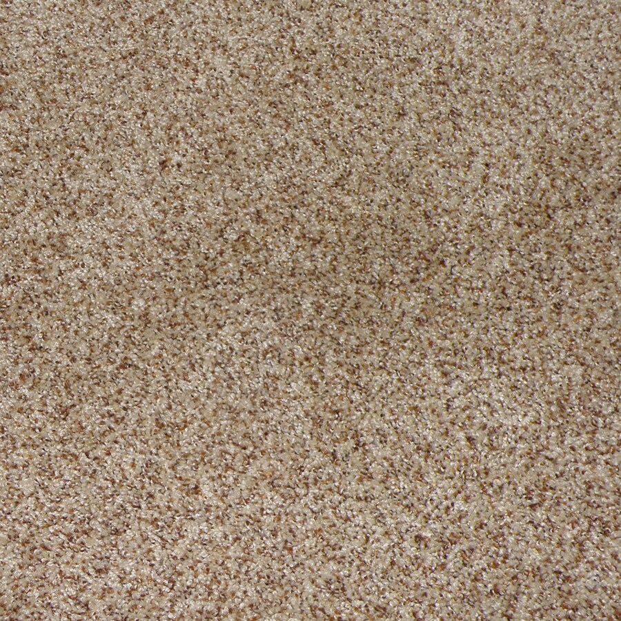 STAINMASTER Active Family Stanfield Sable Interior Carpet
