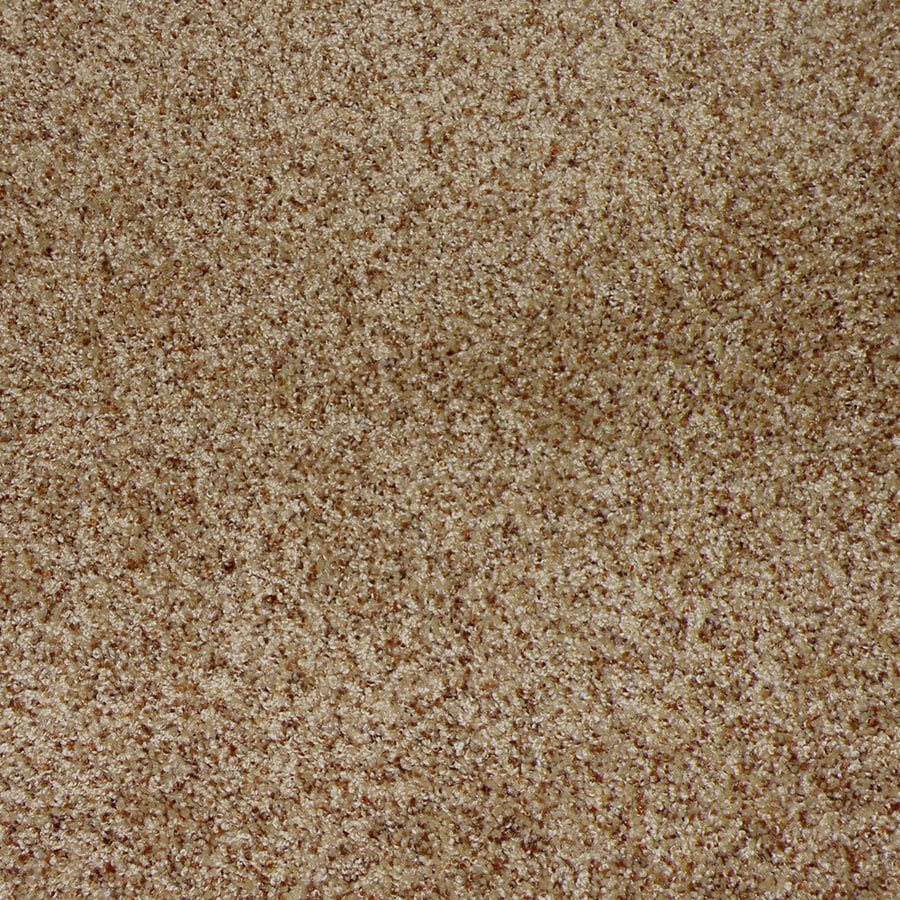 STAINMASTER Active Family Stanfield Henna Interior Carpet