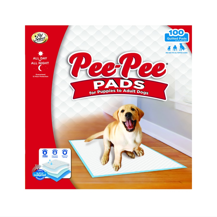 Four Paws 100-Count Medium Training Pads