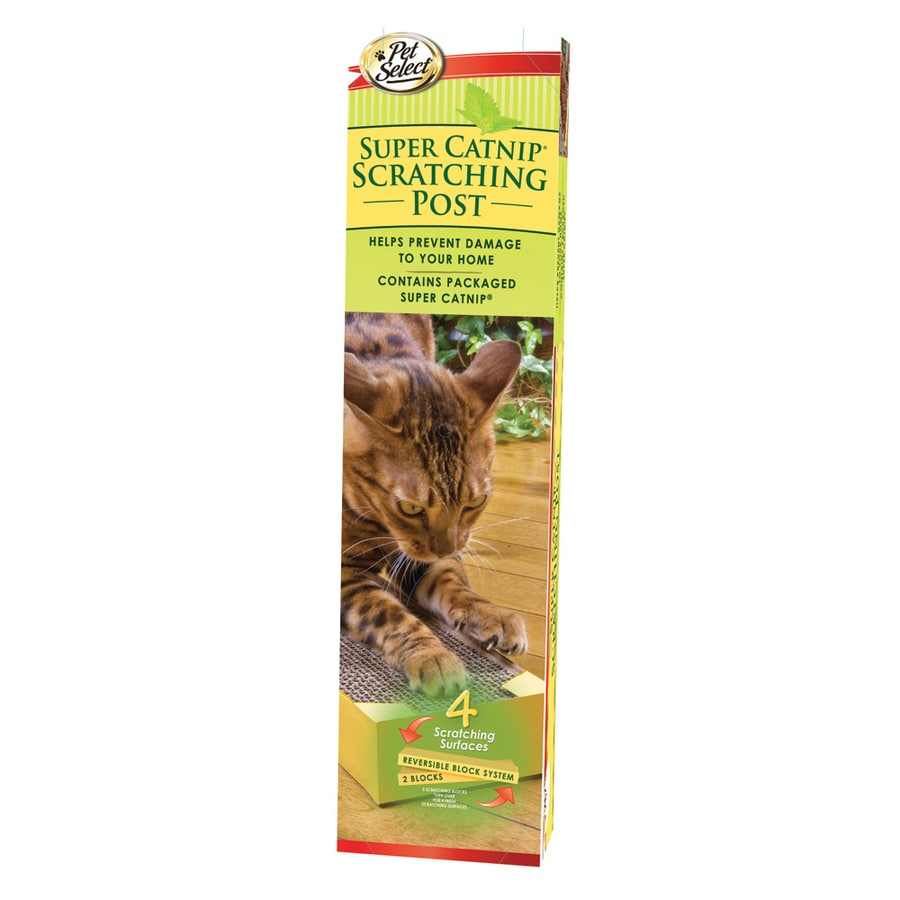 Four Paws Cardboard Scratching Post with Catnip