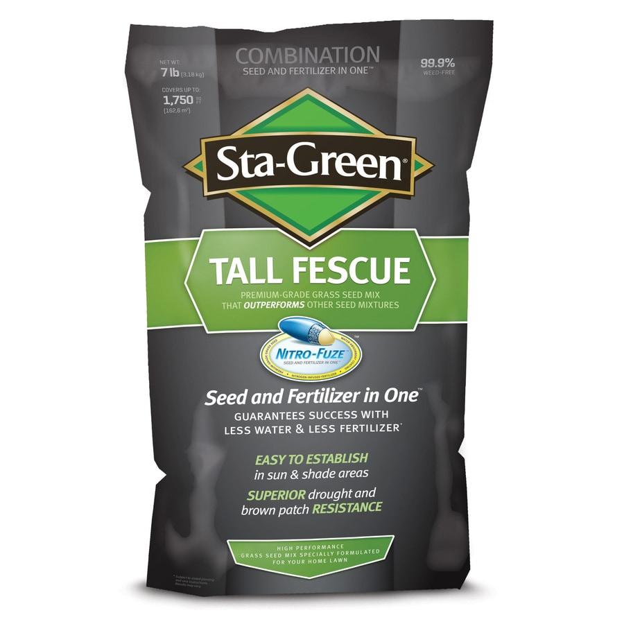 Sta-Green Nitro-Fuze 7-lb Fescue Grass Seed