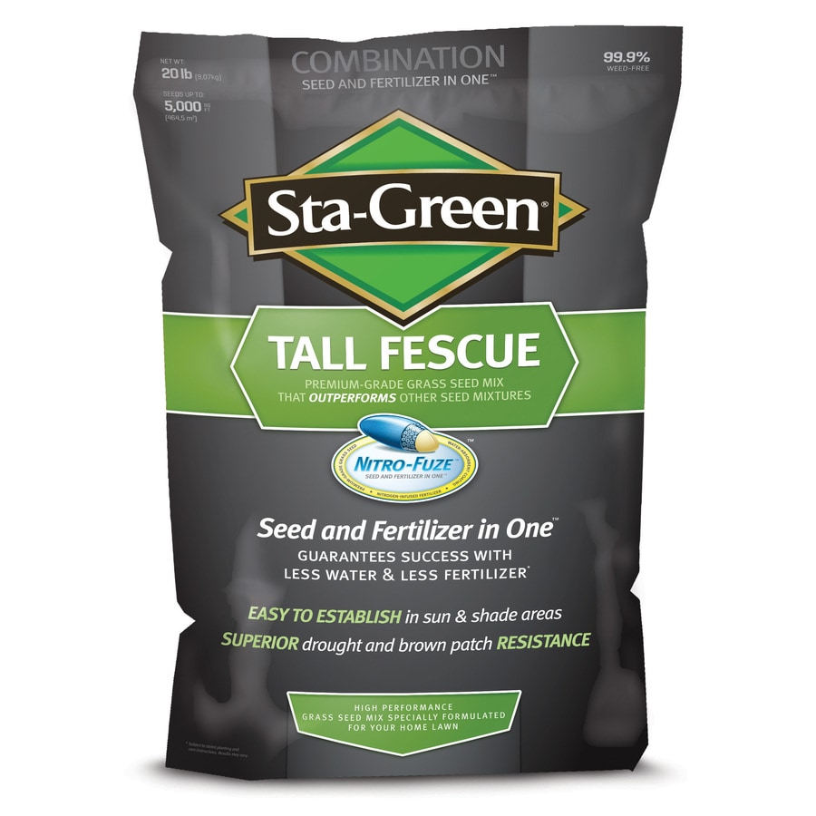 Sta-Green Nitro-Fuze 20-lb Fescue Grass Seed