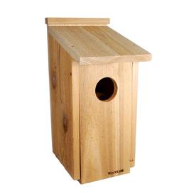 Woodlink Wooden Screech Owl Kestrel Bird House Nesting Box with Wood Shavings