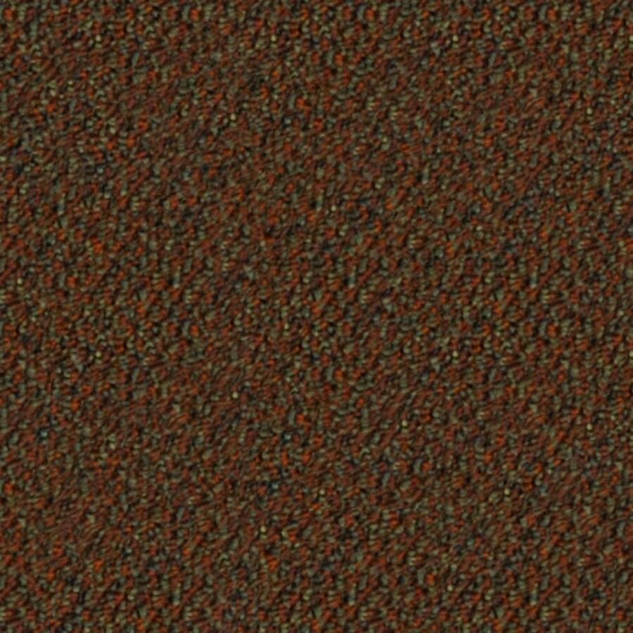 Astoria Mountain Forest Berber/Loop Interior Carpet