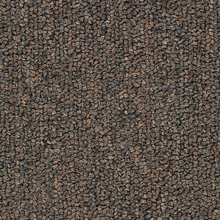 Shop Commercial Cajun Spices Berber Indoor Carpet At Lowes Com