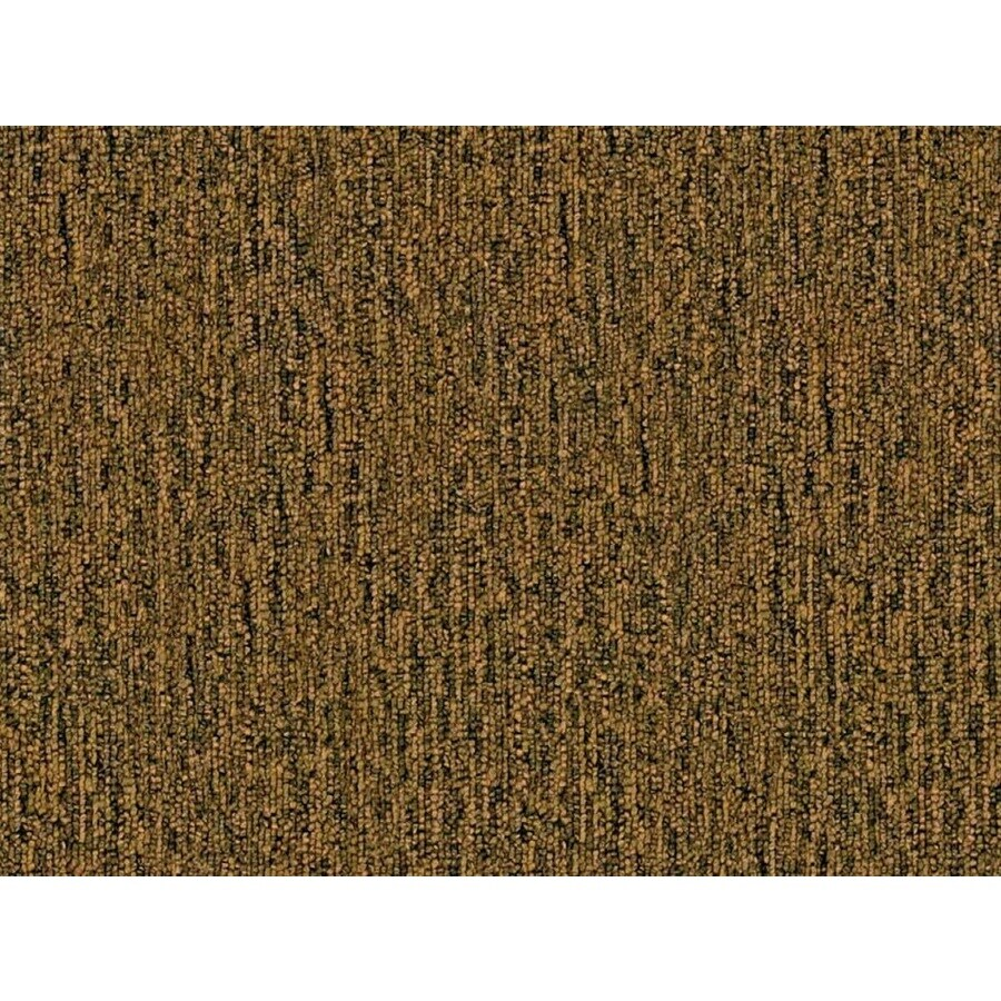 Cadet 20 Driftwood Berber/Loop Interior Carpet