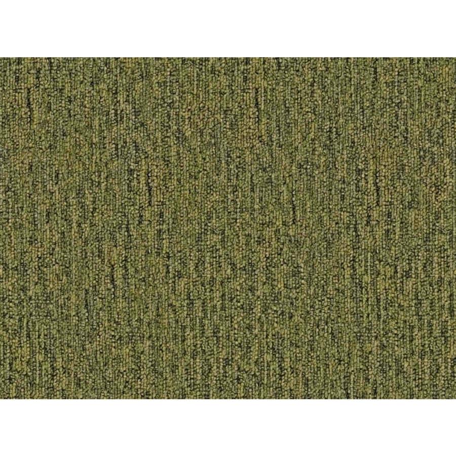 Cadet 20 Sapling Berber Indoor Carpet