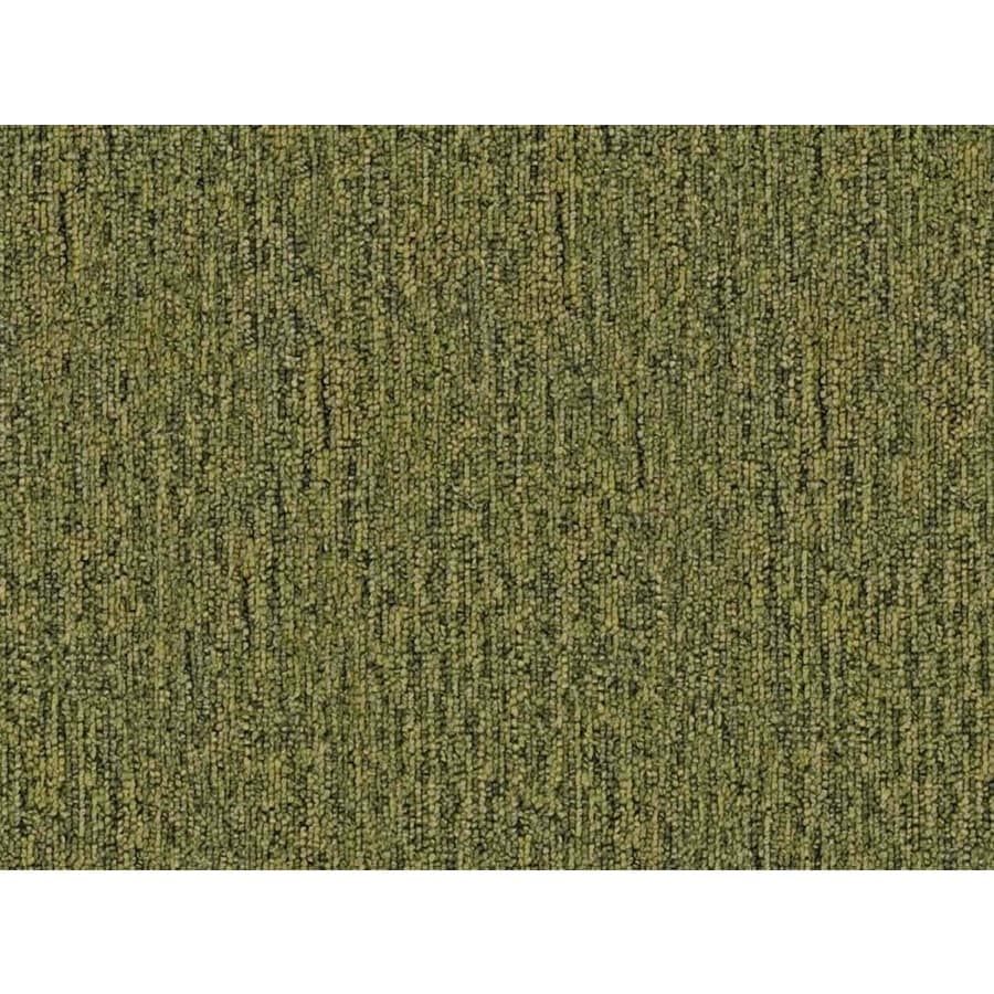 Cadet 20 Sapling Berber Indoor Carpet