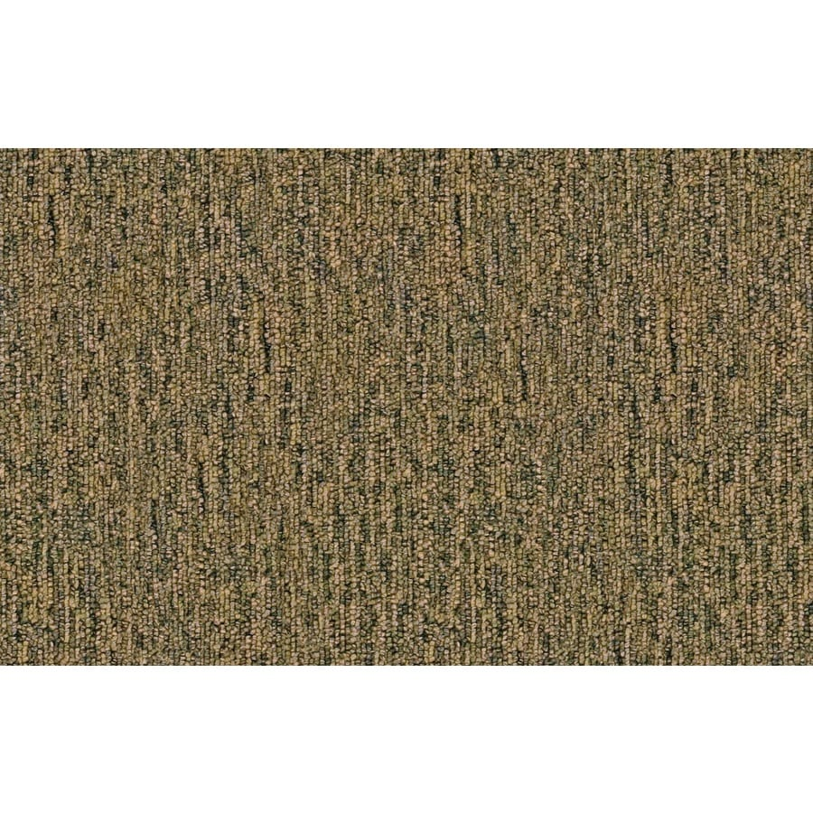 Coronet Cadet 26 Panama Berber/Loop Interior Carpet