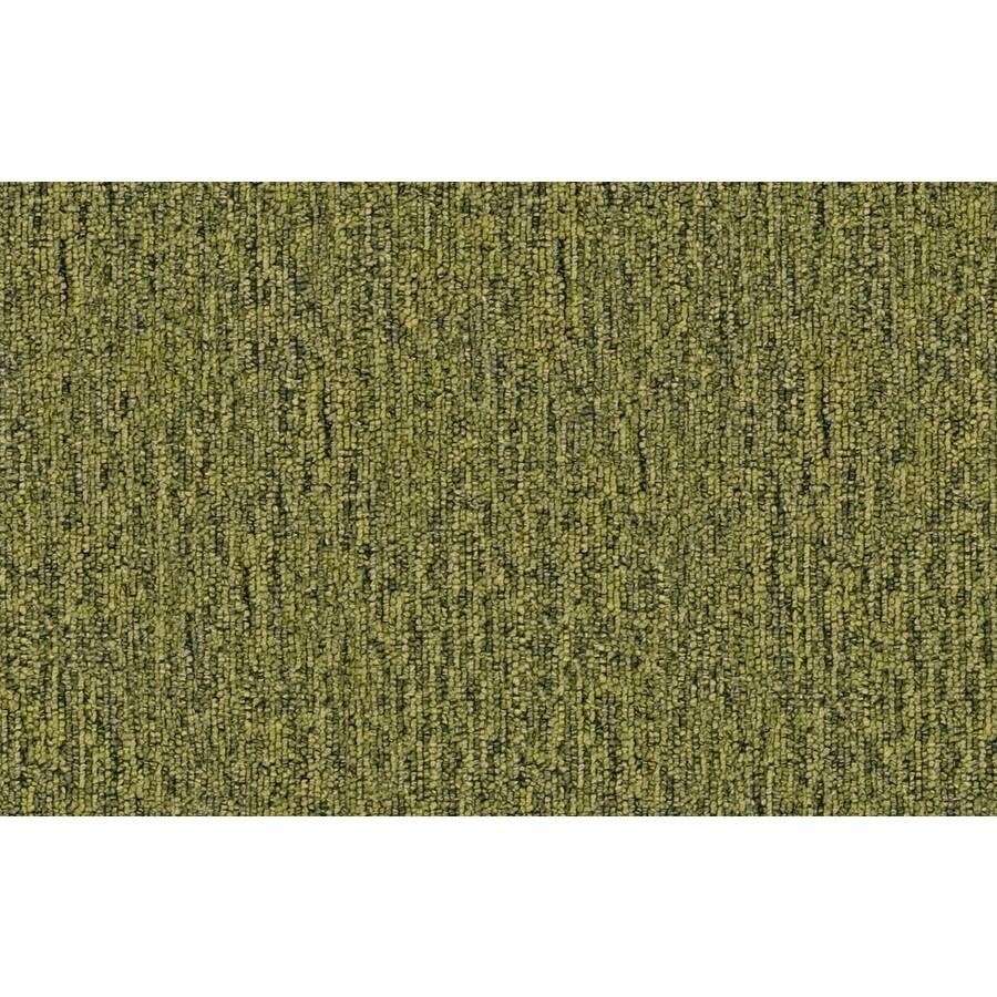 Coronet Cadet 26 Sapling Berber/Loop Interior Carpet