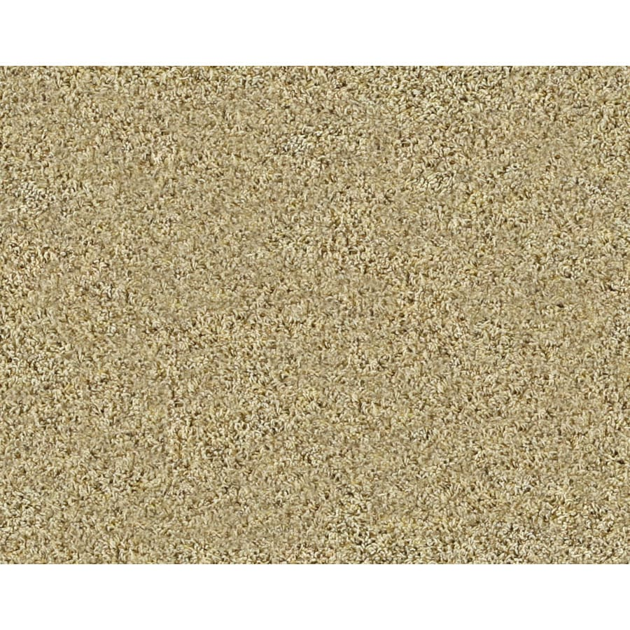 STAINMASTER Active Family Gleaming Windsor Frieze Indoor Carpet