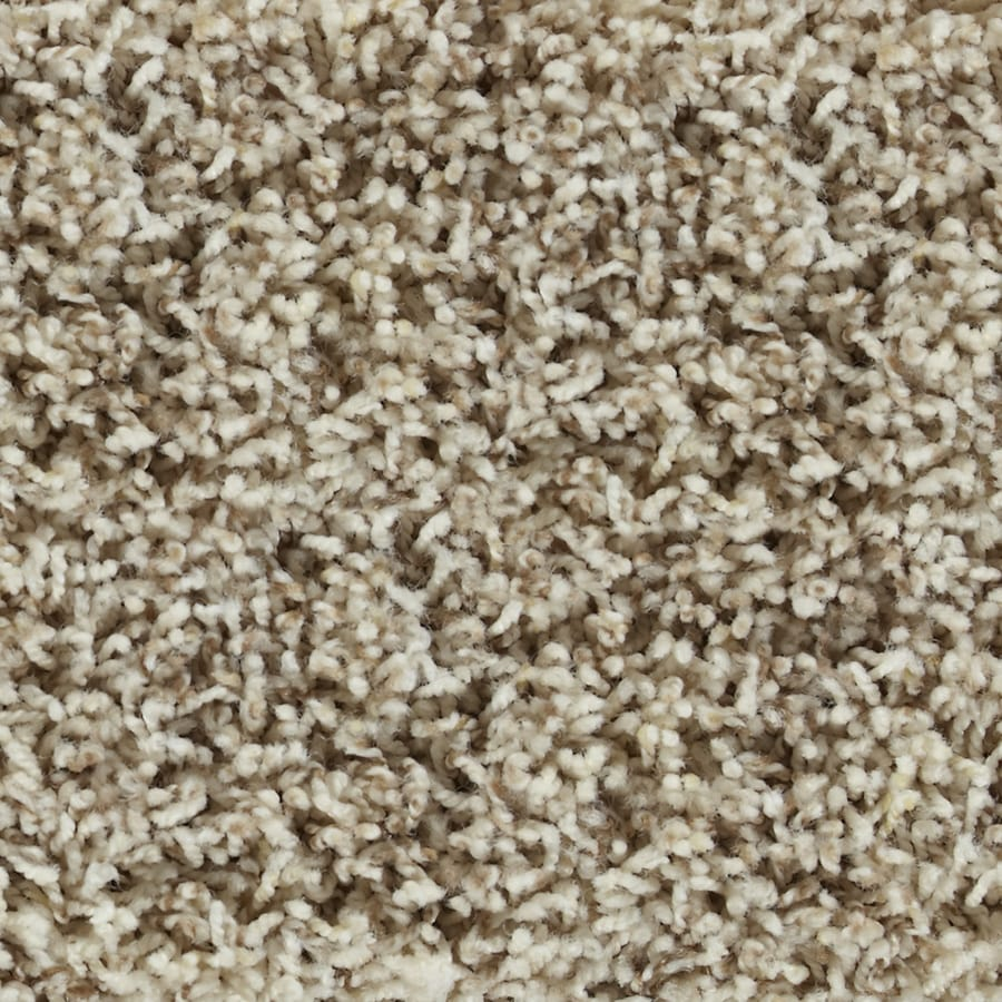 STAINMASTER Active Family Carefree Hampton Frieze Indoor Carpet