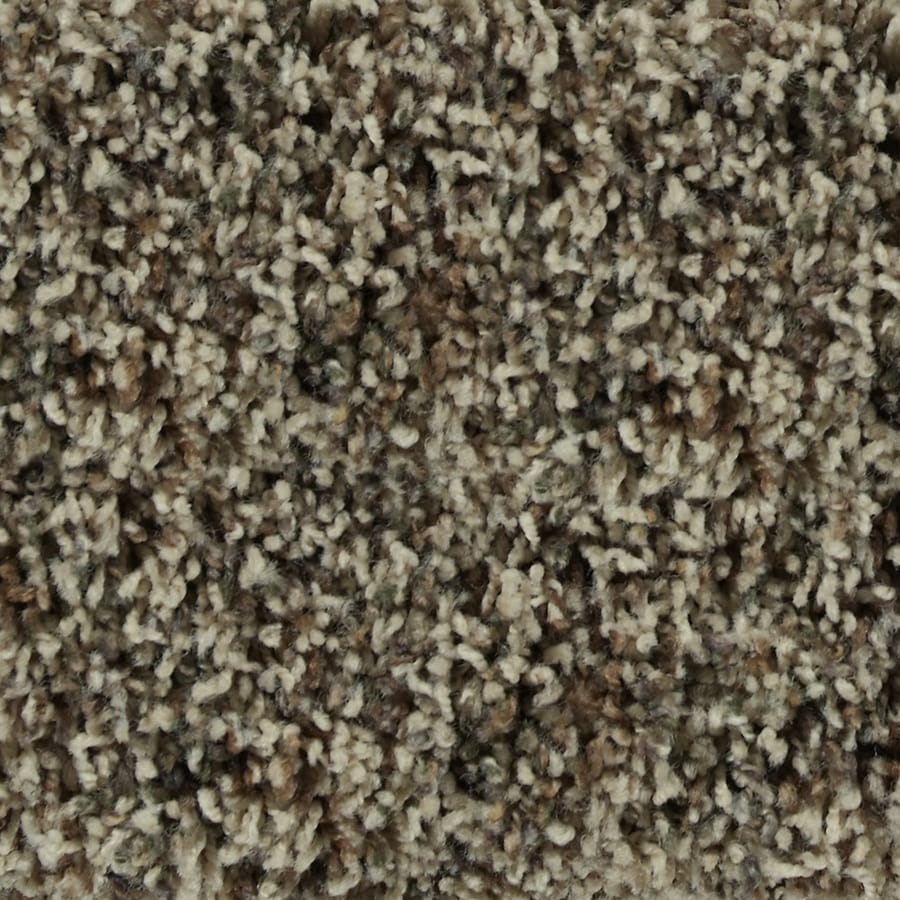 STAINMASTER Active Family Austere Camden Textured Indoor Carpet